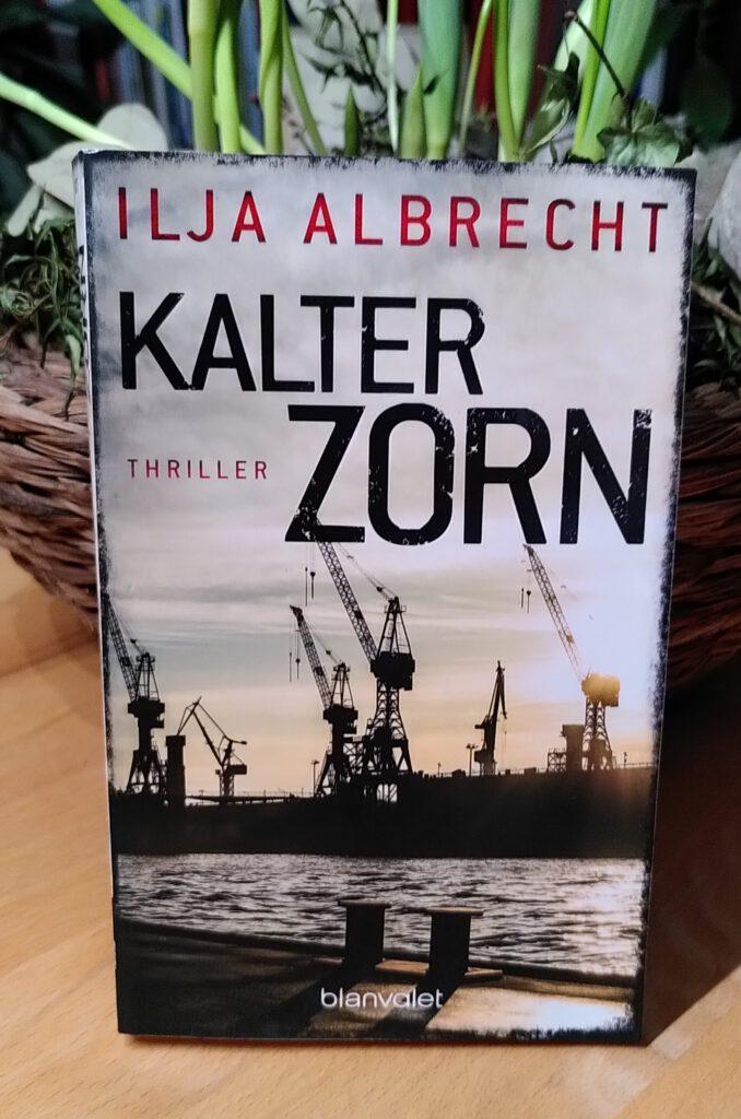 Ilja Albrecht - Kalter Zorn - Kiran ermittelt
